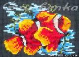 Рыбка-клоун, или Как вышивать шерстью на чёрной канве